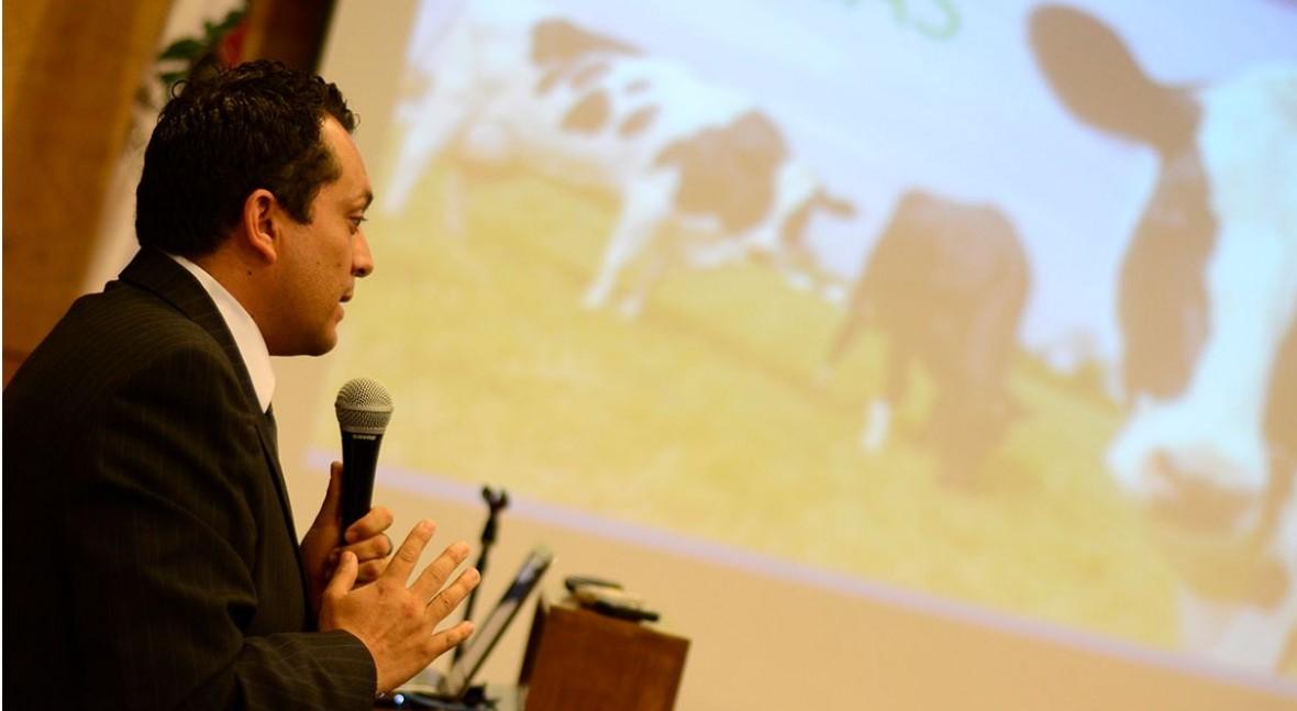 Científicos colombianos proponen que vacas se alimenten residuos papel