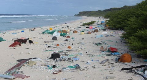 residuos invaden isla remota Henderson