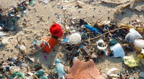 Plásticos, gran amenaza mares