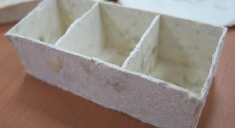 Escamas tilapia, alternativa al plástico
