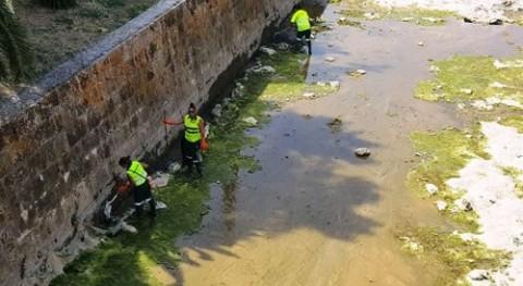 Emaya finaliza tareas limpieza sa Riera