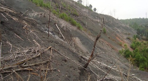 UPNA participa proyecto europeo minimizar problemas medioambientales generados residuos carbón