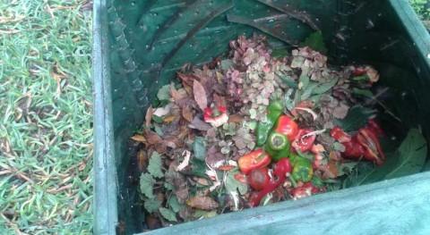150 hogares Redondela, Covelo y Campo Lameiro se apuntan al compostaje doméstico