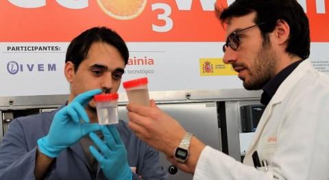 marcha primera planta piloto reutilizar agua empleada lavado cítricos