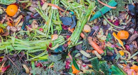 Álava impulsa reciclaje residuos orgánicos