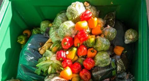 ¿Quiénes son responsables desperdicio alimentos?
