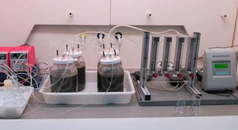 ¿Cómo recuperar gas amoniaco aguas residuales y transformarlo fertilizante nitrogenado?