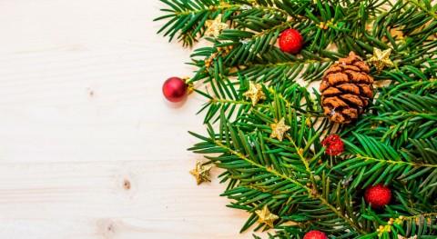 Gijón convoca V Concurso Escolar Árboles Navidad Reciclados