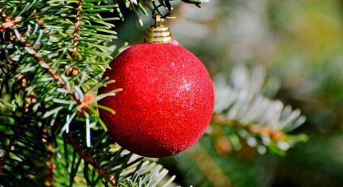 Abierto plazo inscripción Concurso Árboles Navidad Reciclados Gijón