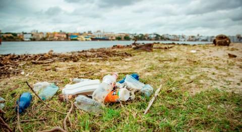 Seis motivos que medio ambiente saludable tiene que ser derecho humano