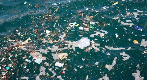 ¿Cuánto plástico hay mar y océanos?