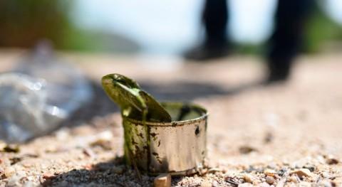 Nuevo respaldo internacional lucha basura naturaleza