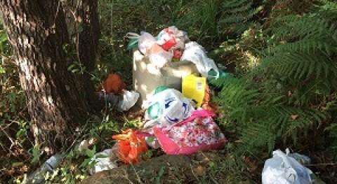 Ecologistas denuncia presencia basuras Parque Natural Alcornocales