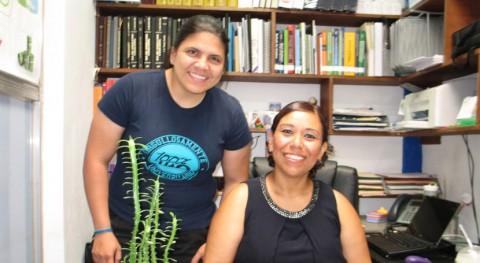 México desarrolla abono orgánico peletizado base desechos agroindustriales
