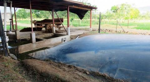 biodigestión residuos, herramienta clave producción sostenible alimentos