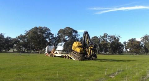 ¿Cómo afecta innovación maquinaria rentabilidad biomasa forestal?