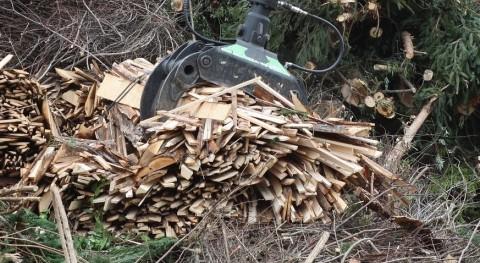 ¿Cómo elegir ubicación idónea plantas biomasa?