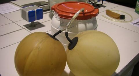 biometanización residuos lucha efecto invernadero