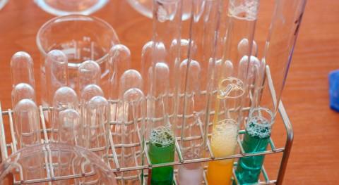 Proyecto SOSTPACK: ¿Cómo mejorar propiedades bioplásticos comerciales?