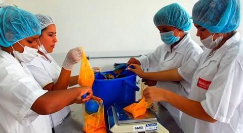 industria farmacéutica encuentra potencial residuos mora y aguacate