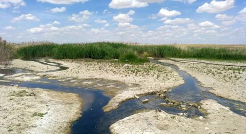 Microplásticos Reserva Biosfera Mancha Húmeda