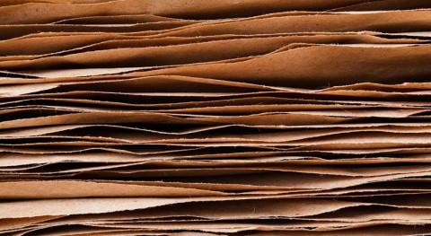 inversión bioeconomía circular, prioridad sector papel