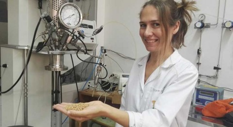 investigación prueba que cáscaras pistacho eliminan contaminantes emergentes