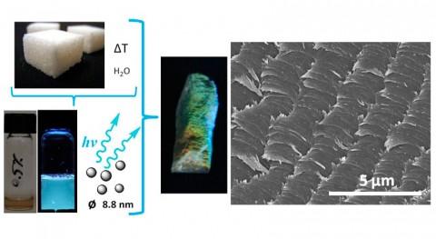 Periódicos y azúcar, materias primas fabricar sensores celulosa