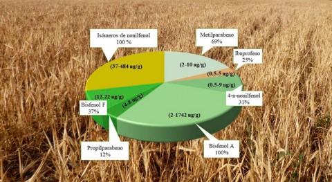 estudio detecta trazas contaminantes plásticos, detergentes y medicamentos cereales