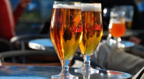 ¿Es posible obtener cerveza artesanal desechos agroindustriales?