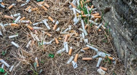 colillas son residuo tóxico: ¿ qué no gestionamos como tal?