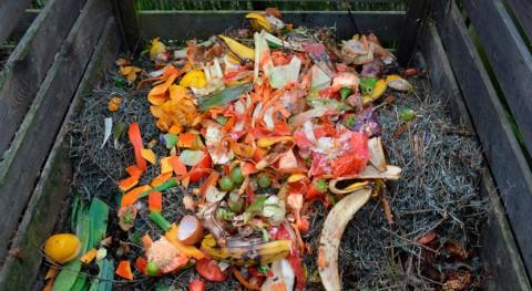 ¿Cómo realizar compostaje casero?