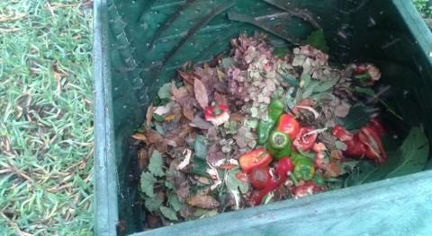 10.476 hogares asturianos disponen compostadora gestionar biorresiduos