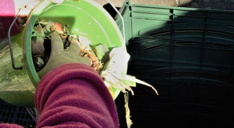 Segunda visita seguimiento hogares adscritos al doble programa compostaje As Pontes