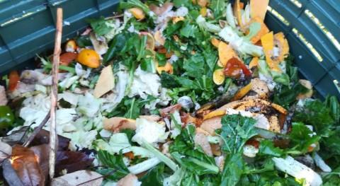 Piñor extiende programa compostaje doméstico 25 nuevos hogares