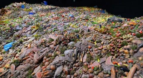 Cómo rediseñar sistema alimentario evitar desperdicio