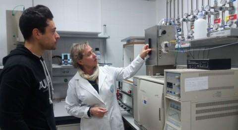 diésel se enriquece aditivos obtenidos catalizadores sólidos menos contaminantes