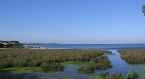 MAGRAMA reanuda obras depuración entorno Doñana que entren funcionamiento primer trimestre 2013