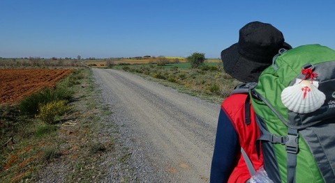 Camino Reciclaje recicla más 55.700 kilos envases Ruta Jacobea Castilla y León