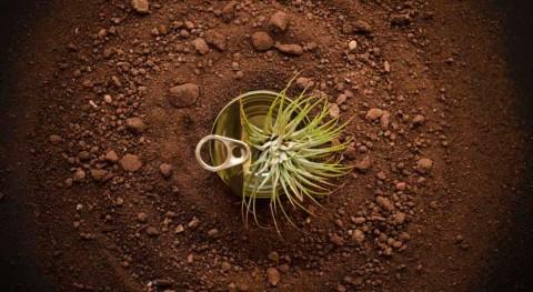 Quinto aniversario 'Upcycling', exposición fotografía reciclaje
