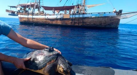 campaña Alnitak y LIBERA recoge 30 m3 basura marina