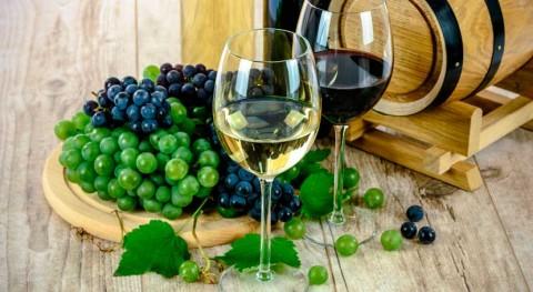 Grajera acogerá II Jornada WETWINE gestión efluentes vitivinícolas europeos