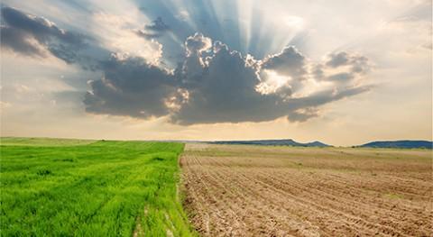 entidades acreditadas ENAC apoyan consecución ODS cambio climático
