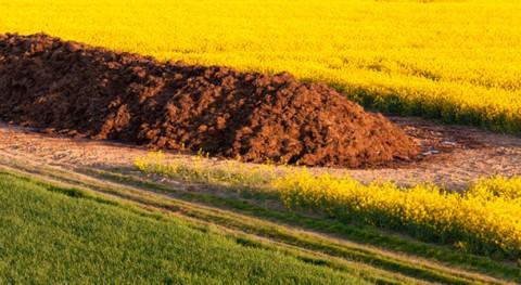 tratamiento térmico residuos podría ayudar luchar cambio climático