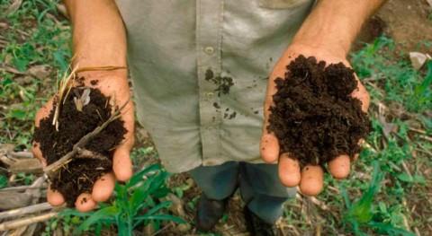 Cuidar nuestros suelos como garantía lucha cambio climático