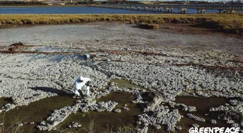 Ecologistas pide retirada proyecto clausura balsas fosfoyesos Huelva