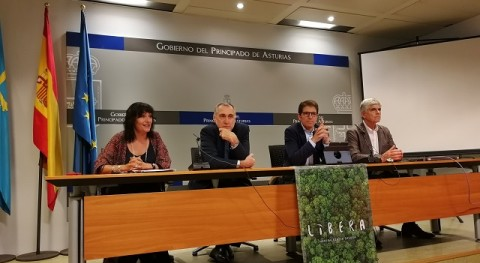 Asturias se une al proyecto LIBERA luchar basuraleza