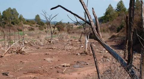 contaminación y actividad agrícola provocan exceso salinidad ríos