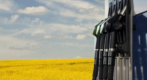 acreditación ENAC, RD Verificación Sostenibilidad Biocarburantes