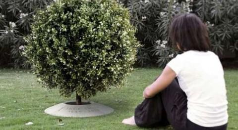 Parque Paz incorpora urnas biodegradables que se convierten árboles